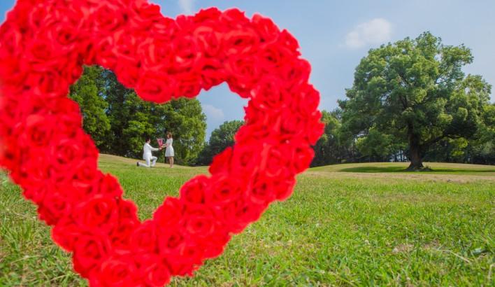 愛を伝える花言葉